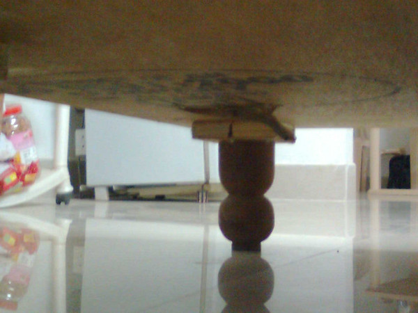 "An upside-down gecko under the furniture. It""s in the center of the picture just above the table leg."