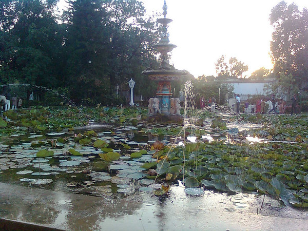 A photo of the lotus pond and historic fountain in Udaipur.